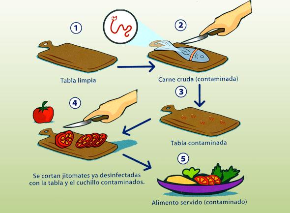 No usar una misma tabla para carne y pescado el Lavado y desinfeccion de utensilios de cocina